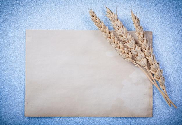Złote kłosy pszenicy i wzór arkusza papieru na niebieskiej powierzchni