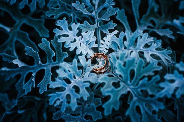 Złote obrączki ślubne na niebieskich prześcieradłach