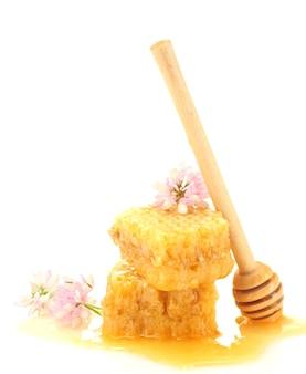 Złote plastry miodu, polne kwiaty i drewniana mżawka z miodem na białym tle