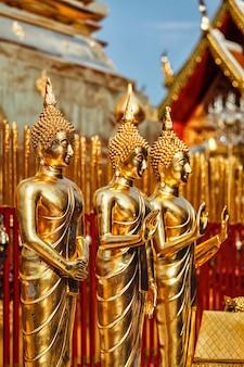 Złote posągi buddy w wat phra that doi suthep