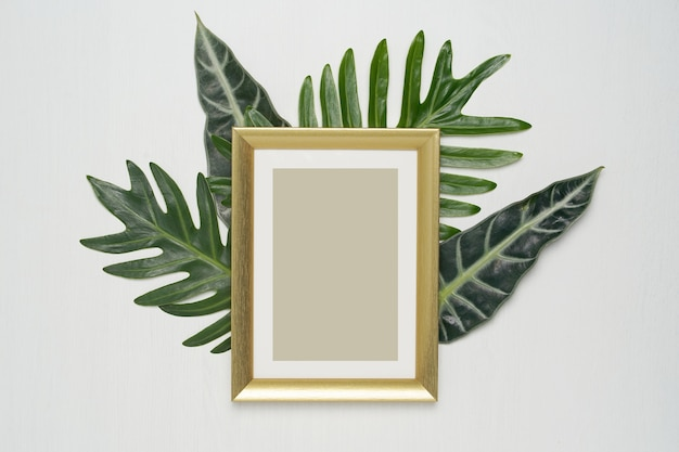 Złote ramki i zielone liście na białym tle.