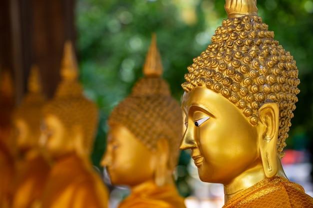 Złoty budda w świątyni