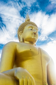 Złoty buddha statua na niebieskiego nieba tle w thailand.
