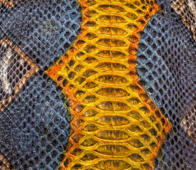 Złoty i szary wzór tekstury skóry węża