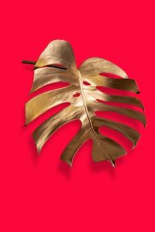 Złoty liść palmy tropikalnej monstera na pastelowym luksusowym czerwonym abstrakcyjnym wzorze do projektowania