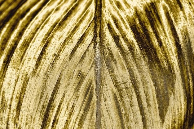 Złoty liść tło