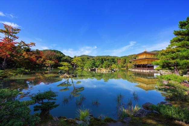 Złoty pawilon świątyni kinkakuji z jesiennymi kolorami liści wokół stawu z odbiciem panoramy, kioto, japonia. słynny punkt orientacyjny podróży w rokuonji w kansai.