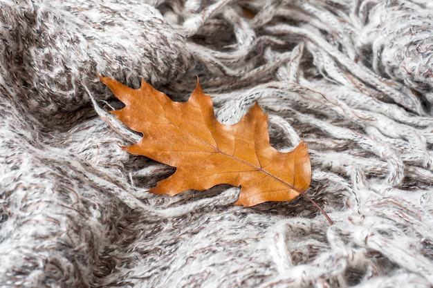 Zmięty szary dzianinowy koc z jesiennym liściem dębu
