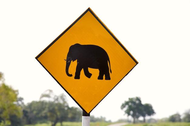 Znak na drodze na sri lance