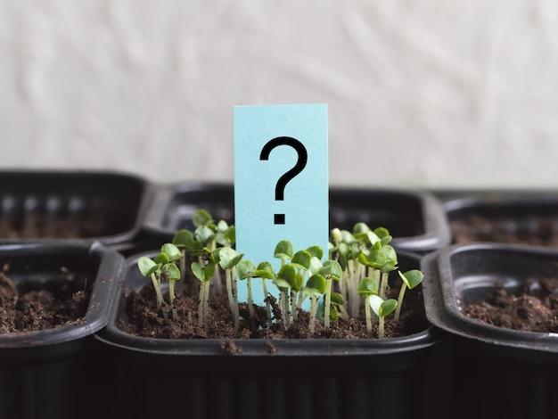 Znak zapytania i roślina. malowany znak zapytania obok łyżki