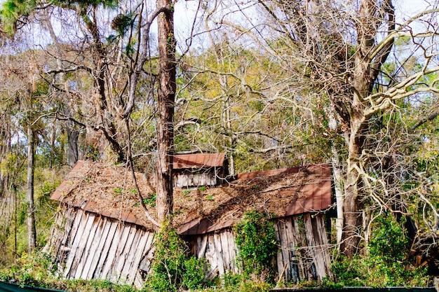 Zniszczona opuszczona drewniana konstrukcja głęboko w lesie