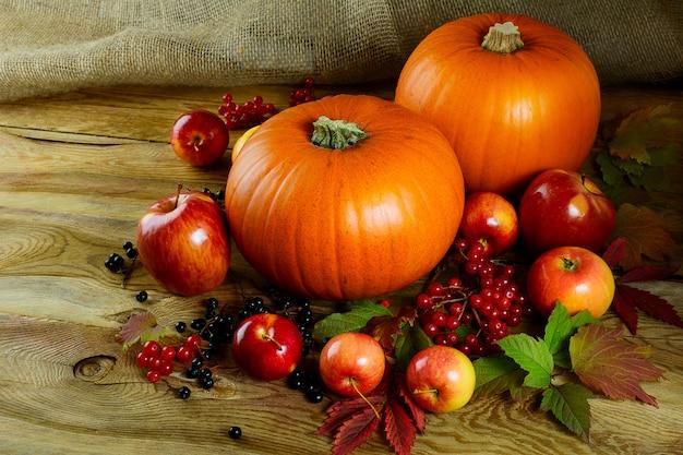 Żniwo pojęcie z baniami, jagodami i jabłkami