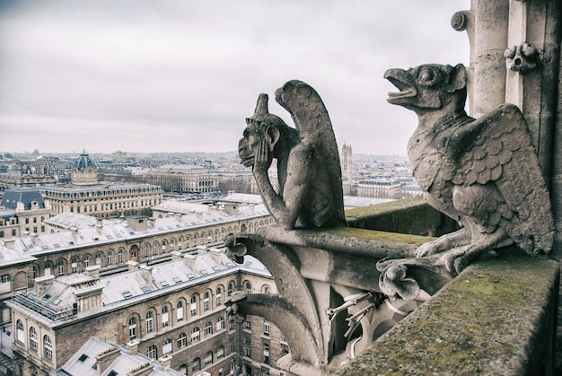 Znudzony gargulec siedzi na szczycie notre dame i spogląda na paryski krajobraz poniżej