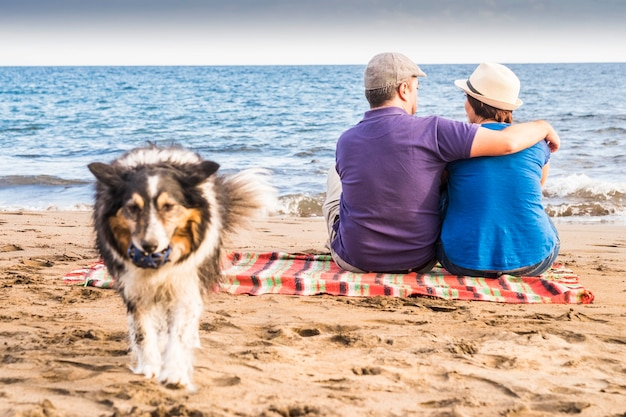 Znudzony pies rasy border collie chce bawić się piaskiem i oceanem na plaży. właściciele zakochani mężczyzna i kobieta siadają blisko brzegu i fal. koncepcja miłości razem para i alternatywna rodzina