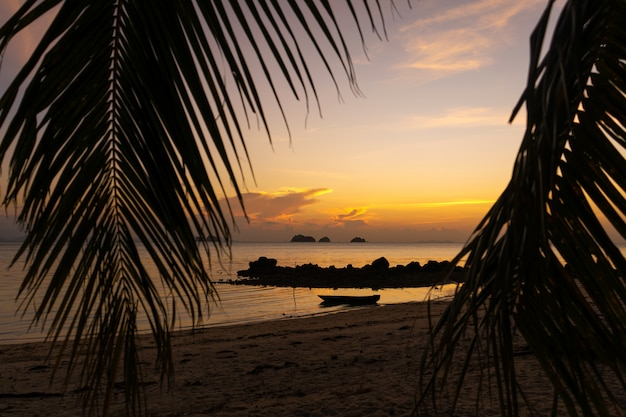 Zobacz przez liście palm na oceanie. na wodzie jest drewniana łódź. zachód słońca. plaża piaskowa. romans