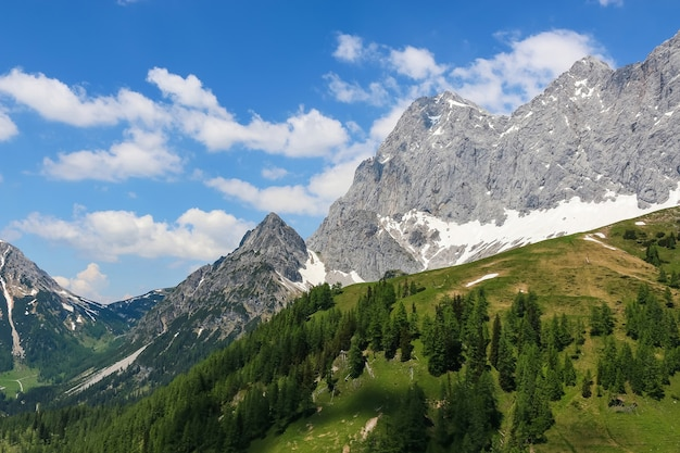 Zobacz zbliżenie alpejskie góry w parku narodowym dachstein, austria, europa. błękitne niebo i zielony las w letni dzień