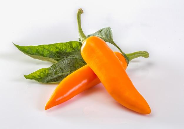 Żółci chili pieprze odizolowywający na białym tle