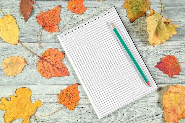 Żółci jesień liście i notatnik na lekkim starym drewnianym tle