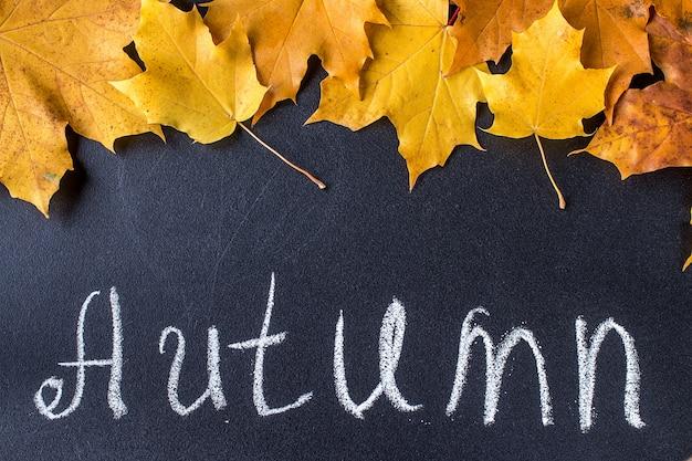 Żółci jesień liście na czarnym chalkboard tle.