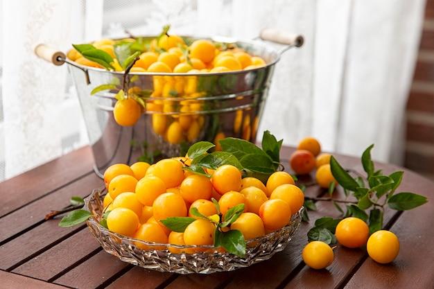Żółta śliwka mirabel w misce po zebraniu na drewnianym stole. letni sezon owocowy. zbiór.