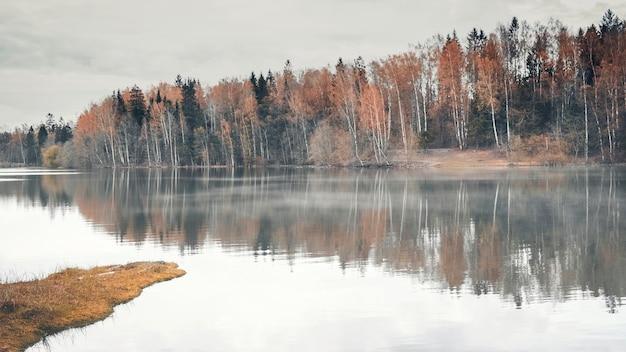 Żółte brzozy na brzegu lasu odbijają się w porannym mglistym jeziorze jesienią