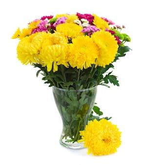 Żółte, czerwone i różowe świeże kwiaty mamy w szklanym wazonie na białym tle