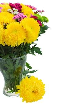 Żółte, czerwone i różowe świeże kwiaty mamy w szklanym wazonie z bliska na białym tle