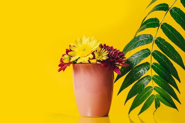 Żółte i różowe kwiaty gerbera w różowej filiżance na żółtym tle z zieloną dużą zieloną gałązką z liśćmi