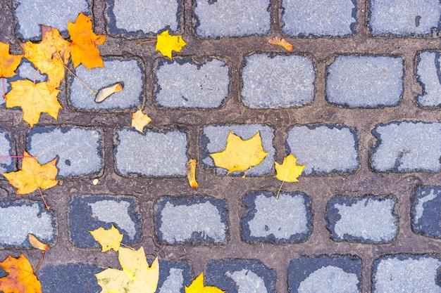 Żółte jesienne liście na ceglanym murze
