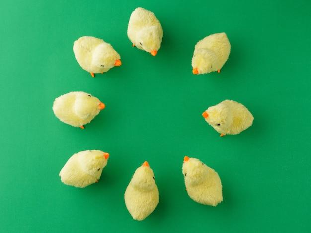Żółte kurczaki-zabawki stoją w kręgu. zielone tło.