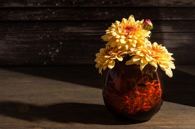 Żółte kwiaty chryzantemy w ostrym świetle słonecznym