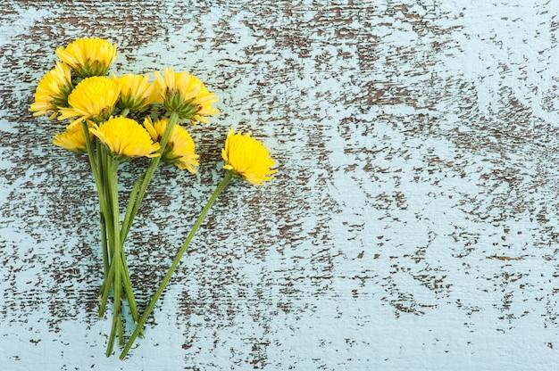 Żółte kwiaty chryzantemy. widok z góry