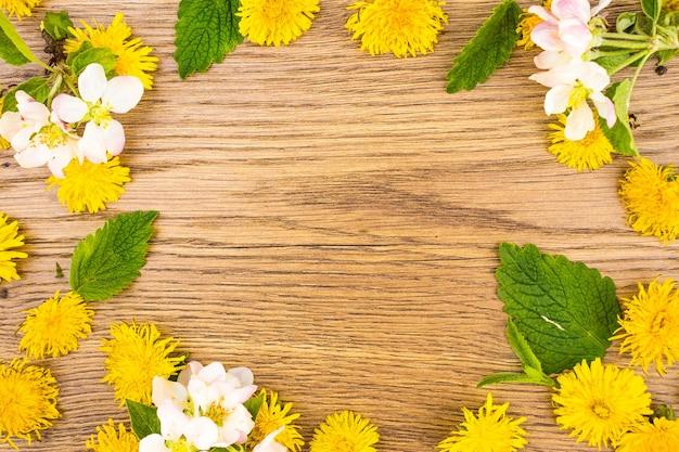 Żółte kwiaty mniszka lekarskiego i białe kwiaty jabłoni z bliska na tle kopii przestrzeni. widok z góry, kolorowa ramka z miejscem na tekst, układ płaski