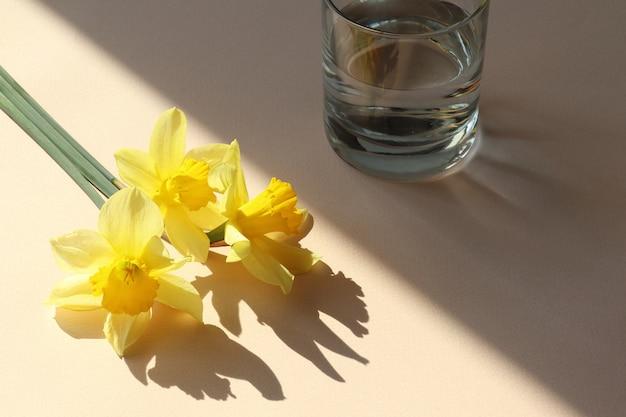 Żółte kwiaty, szklanka wody na beżowym stole z cienia