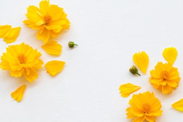 Żółte kwiaty układ kosmosu mieszkanie leżał styl pocztówki