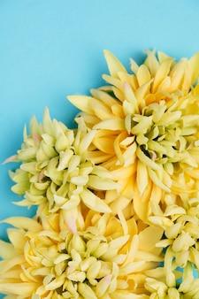 Żółte kwiaty widok z góry z miejsca kopiowania