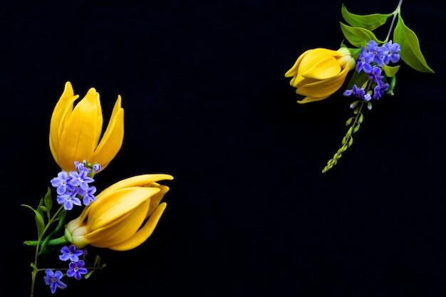 Żółte kwiaty ylang ylang układ pocztówka styl na blac