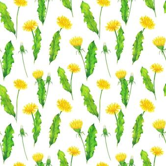 Żółte mlecze i zielone liście wzór na białym tle. powtórz letnie kwiaty wydruku. kolorowe kredki ornament dzikich kwiatów.