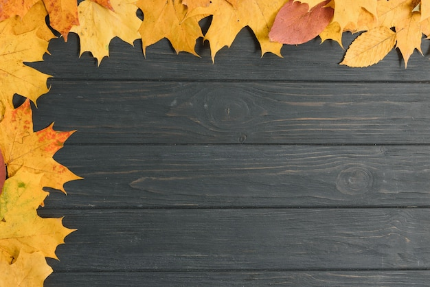 Żółte mokre jesienne liście na tle starego drewna