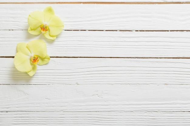 Żółte orchidee na białej drewnianej powierzchni