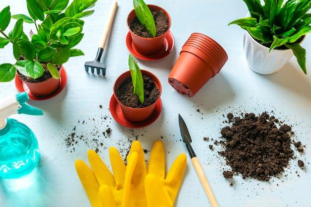 Żółte rękawiczki i materiały do przesadzania roślin na niebieskim tle