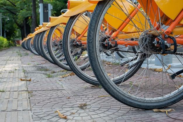 Żółte rowery treningowe na ulicy są starannie ułożone