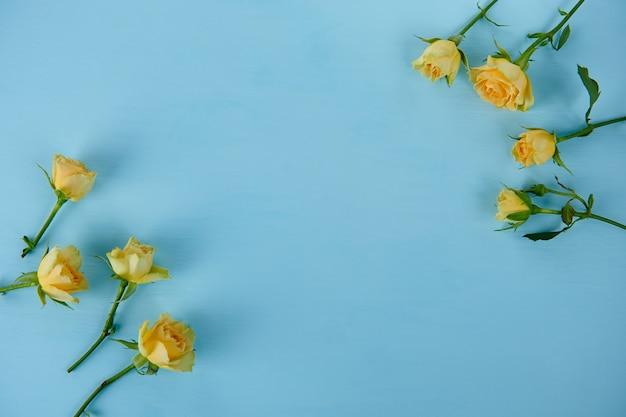 Żółte róże na niebieskiej powierzchni