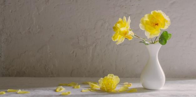 Żółte róże w białym wazonie na białej ścianie ściany