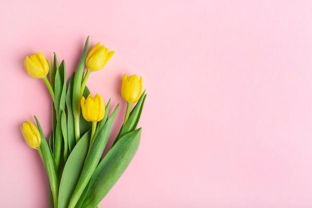 Żółte tulipany na różowym tle