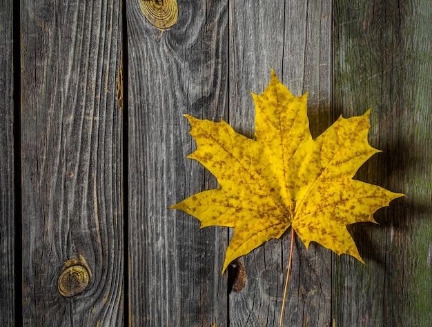Żółty jesienny liść na starej drewnianej powierzchni