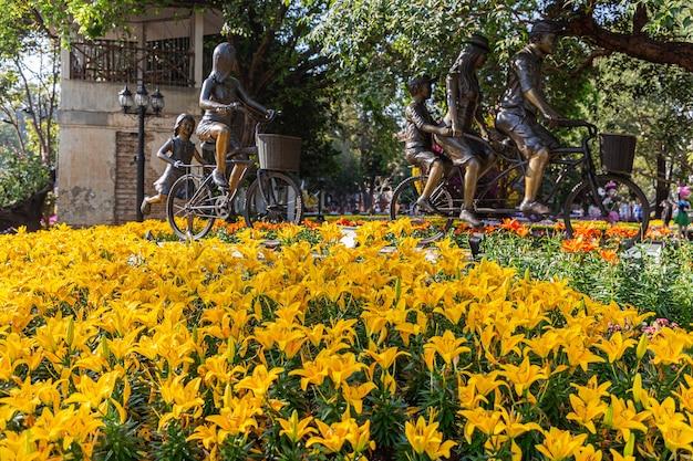 Żółty kwiat kwitnący lilly w ogrodzie