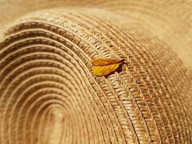 Żółty liść spadający z drzewa leży na słomkowym kapeluszu. koncepcja jesień, akcesoria.