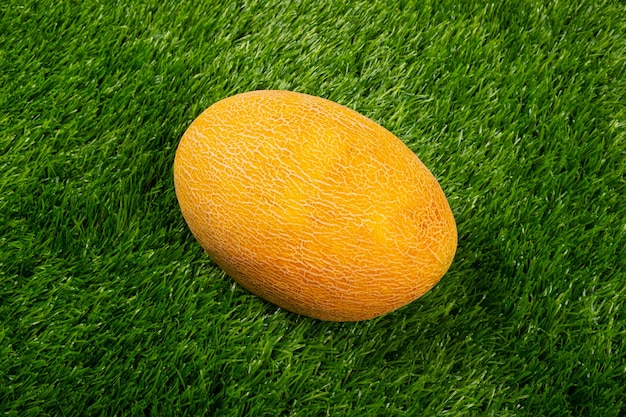 Żółty melon na zielonej trawie