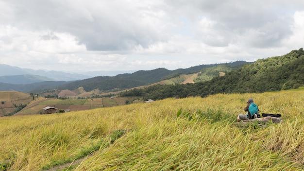 Żółty tarasowy pole ryżowe z tradycyjną drewnianą chatą
